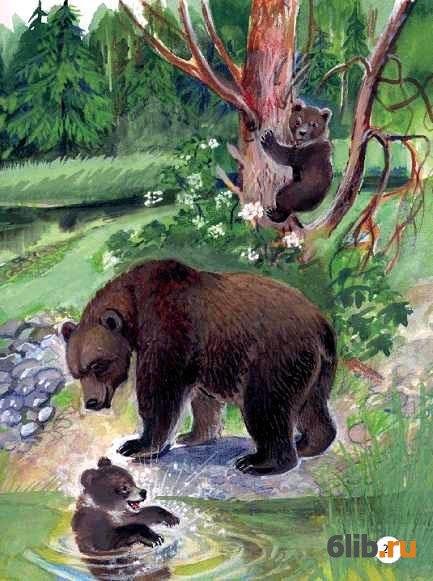 кран иллюстрации к рассказу в бианки купание медвежат актриса модель, ставшая