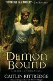 книга Demon Bound