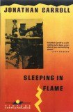 книга Sleeping in Flame